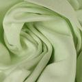 Baumwoll Jersey matt fein in hellgrün